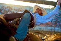 Rodeo Rumble