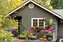 CURB APPEAL / by Marketa