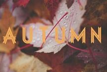 Autumn Leaves / Every leaf speaks bliss to me, fluttering from the autumn tree. ~ Emily Bronte    / by ~ Terri ~