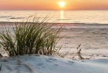 Beach ~ Sand and Sun / Beautiful scenes that reflect my love of the beach.  / by ~ Terri ~