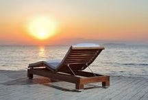 Saccaro's Outdoor furniture / Innovative and unique outdoor furniture.
