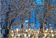 Party Ideas/ wedding ideas