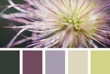 Colour scheme combos