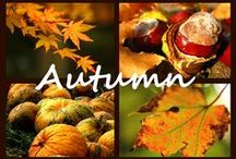 Just Fall/Autumn