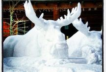 Ice and Snow Sculptures / Ice and Snow Sculptures / by Florence Luis