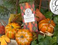 Gracious / Fragrance of sweet and creamy pumpkin, blended into an elegant fruit musk. www.greenleafgifts.com