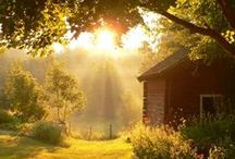 Country and Farm Life / . / by ~ Terri ~