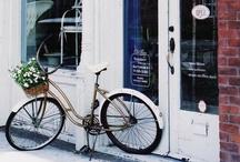bi-cycle / by Jennifer Hur