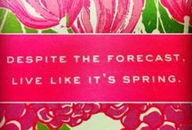 "Little Bit of Lilly / Lilly Pulitzer and all things Preppy & Classy ... ""Lilly Lover"" / by Sarah Strickland"