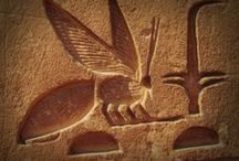 Egypt / Scenes and images of Egypt - the setting for my book House of Scarab due out soon.