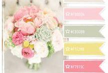 Colors / by Farmgirl Fare