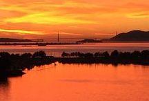 The Futon Shop San Francisco / 2150 Cesar Chavez St SF, CA 94124 (415) 920-6801 Corporate Office Line: (415) 920-6800