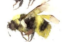 Bees / by Dawn Rogers
