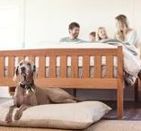 Chemical Free Furniture / Chemical Free Mattresses and futons for your home are made for everyday use. Our Chemical Free Futons are made only with Pure Natural Dunlop Latex, Natural Virgin Wool, Pocket Coils Springs, and encased in USDA certified Organic Cotton.