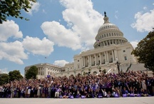 Pancreatic Cancer Actn Ntwk / by Pancreatic Cancer Action Network