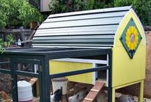 "Community Coops / Post your very own Chicken Coops here with a description so other may enjoy them as well... If you would like to contribute email me at paulsrarepoultry@live.com so you can share your pins as well. Spam content will be reported. √ Feel free to invite your friends (just edit the board and add your friends). NOTE: Please follow the board (CLICK FOLLOW) ""ABSOLUTELY NO SPAM"" or DELETE Happens! ""COOPS ONLY"" (((ECHO))) / by PaulsRarePoultry"