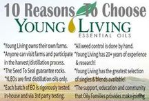 Essential Oils ~ Young Living / by Mindy Robinson
