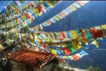 """Fragrance of the Month October / Offered this month a woody duo, Sandalwood & Tibetan Mountain Temple.  40% off of the Value Collections all month long @pacificabeauty.com """"Sandalwood symbolizes a letting-go of the self. It is believed to promote spiritual practice, compassion, openness and peaceful relaxation"""".  Tibetan Mountain Temple  """"This grounded, alluring fragrance was one of my first and most ethereal blends. Vetiver, with a smokey, resinous scent, is one of our favorites."""""""