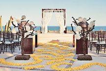 Wedding Ideas / by Stella Plato