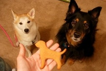 DOG*dog*DoG / by Girrly Daug