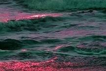 Beautiful Things / by Renee Wolford