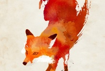 ReD FoX / by ~❀ Temple ❀~