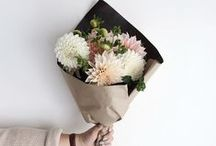 //flowers / Flowers, arrangements, floral, blooms, fleuri journey / by The Sour Cherry