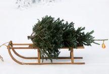 CELEBRATE « Christmas / Christmas / by Lauren Stubel