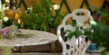 Un giardino in diretta / un reality show per gli appassionati di vita! le foto del blog Un Giardino In Diretta: http://www.giardinoindiretta.it