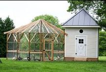 Chicken Coop / by Donna Forney