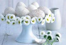 """il giardino che vorrei...speciale Pasqua! / la bacheca del post """"il giardino che vorrei: i 7 migliori pin speciali per la Pasqua!"""" http://giardinoindiretta.blogspot.it/2014/04/il-giardino-che-vorrei-i-7-migliori-pin_16.html #giardino #giardinoindiretta #decorazioni #pasqua"""