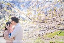 Central Park Engagement Photography Location Guide /  Where to take wedding and engagement photos in Central Park? Engagement picture locations in Bethesda Terrace, Bethesda Fountain, Bow Bridge, The Mall, The Muisc Hall, The Wisteria Walkway, Cherry Blossoms, Boathouse, and The Great Lawn.