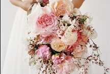pretty / I love flowers and it seems that wedding bouquets are the best bouquets... and the most photographed.   / by Photography by Alison
