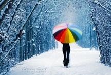 Umbrellas & Parasols / by Alana Silvea