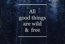 ■ Quotes / Quotes to inspire :)