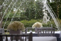 {Posey} Centerpieces and Receptions