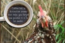 Coffee / by Kathy, The Chicken Chick®