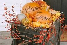 Fall fun / decorating, Halloween, Thanksgiving, crafts / by Carol Booth