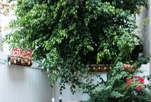 outdoor spaces. / Outdoor space ideas for our future house.