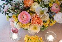 wedding: S + W