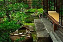 Japan / Japan, Bonsai, tattoo, buddhism, zhen, designertoys