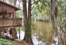 Favorite Places & Spaces / by Sara DuBose