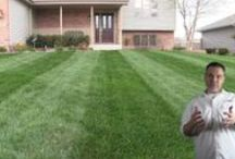 Lawn Care For The Masses / I love lawns man! My grass looks way better than yours LOL and it's organic too! :) Let's practice lawn love! / by Allyn Hane