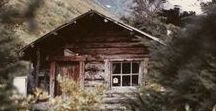 cabin in the woods / Dreaming about having a holiday home