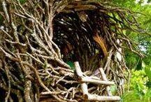 CASITAS: de árbol, de cartón, refugios...