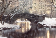 Central Park / by Laura Denney-Lawson
