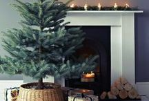 holidays / by Sarah Scussel / Design Me Daily