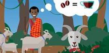 Videos / Watch these videos from Heifer International to learn more about our work of ending hunger and poverty.