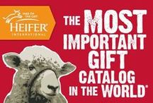 World's Most Important Gift Catalog / Choose to gift different this holiday season while helping families all over the world overcome hunger and poverty. / by Heifer International