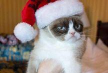 Holidays. / by Savannah Atkinson